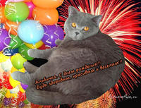 Альби, с днем рождения!