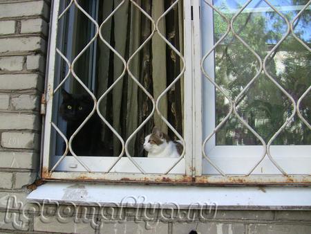 Сидим за решеткой)))