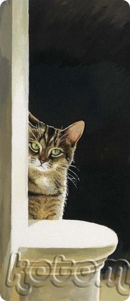 вредные котики тоже бывают, вернее, невоспитанные