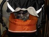 Мне очень подходит этот оранжевый цвет)))