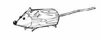 Мышка из веток