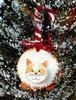 Снежный кот. Украшение на новогоднюю елку.